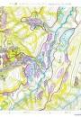東北ブナ帯山菜マップ
